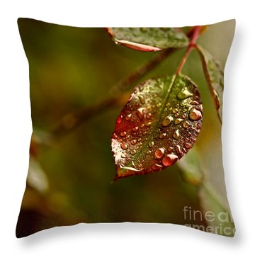 Throw Pillow featuring the photograph Rose Leaf by Liz  Alderdice