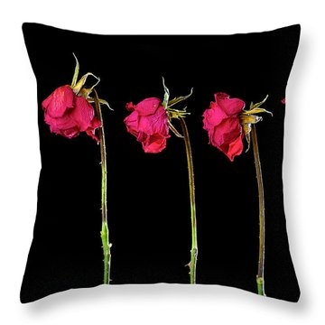 Rose Lineup Throw Pillow by Mauro Celotti