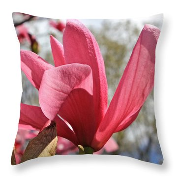 Rose Magnolia  Throw Pillow
