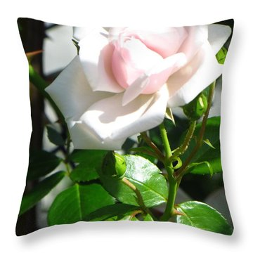 Rose Named Pearl Throw Pillow by Sonali Gangane