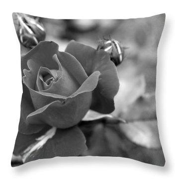 Rose Of Grace Throw Pillow