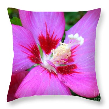 Rose Of Sharon Hibiscus Throw Pillow by Patti Whitten