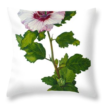 Rose Of Sharon - Hibiscus Syriacus Throw Pillow