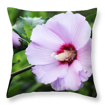 Throw Pillow featuring the photograph Rose Of Sharon by Trina  Ansel