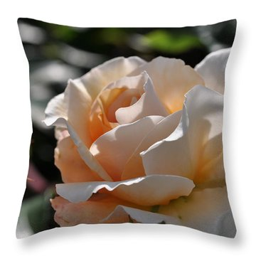 Throw Pillow featuring the photograph Rose Pegasus by Sabine Edrissi