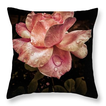 Rose Petals With Raindrops Throw Pillow
