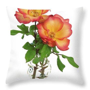 Rose 'playboy' Throw Pillow