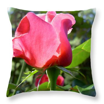 Rose Portland  Throw Pillow by Marlene Rose Besso