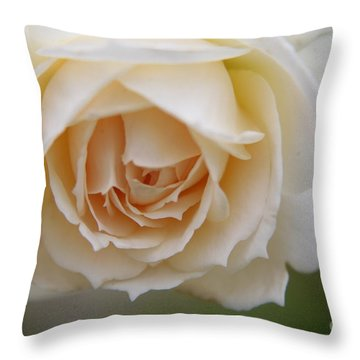 Rose... Pure And Simple  Throw Pillow