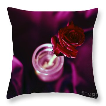 Rose Throw Pillow by Stelios Kleanthous