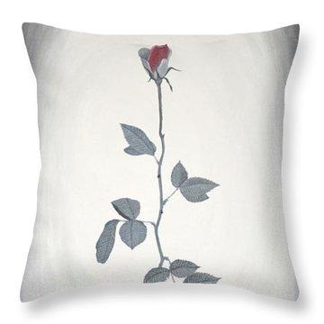 Rose Throw Pillow by Sven Fischer