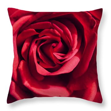 Throw Pillow featuring the photograph Rose Triad I by John Hansen