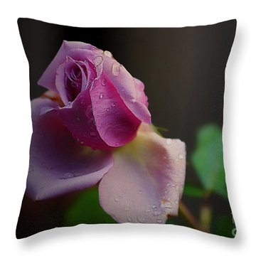 Throw Pillow featuring the photograph Rose With Three Faces by John  Kolenberg