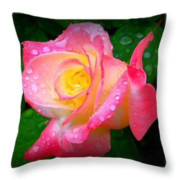 Rose With Water Droplets  Throw Pillow