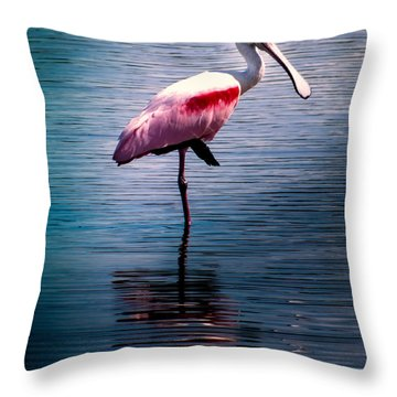 Roseate Spoonbill Throw Pillow by Karen Wiles