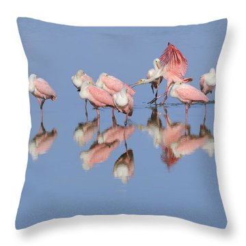 Roseate Spoonbills And Reflections Throw Pillow