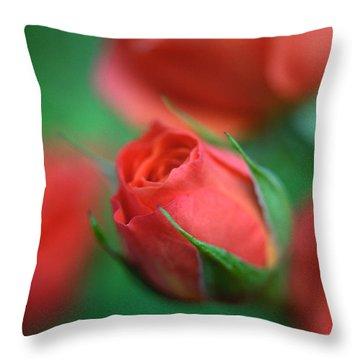 Rosebud  Throw Pillow by Kathy Yates