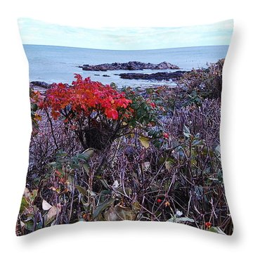 Throw Pillow featuring the photograph Rosehip by Mim White