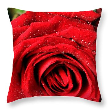 Throw Pillow featuring the photograph Roses 4 by Mariusz Czajkowski