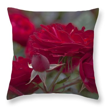 Roses And Roses Throw Pillow by Maj Seda