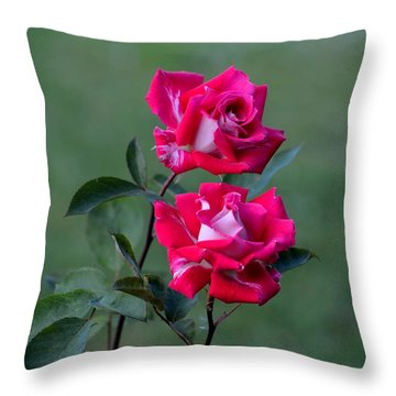 Roses Are... Throw Pillow