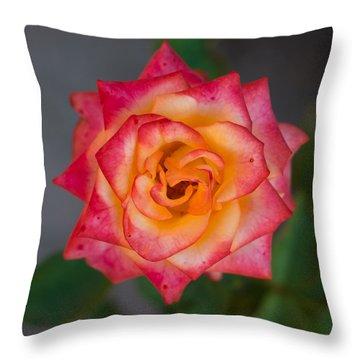 Roses From My Garden Throw Pillow