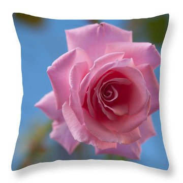 Roses In The Sky Throw Pillow by Miguel Winterpacht