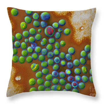 Rotaviruses Throw Pillow by Eye of Science