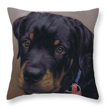 Rottweiler Dog Throw Pillow