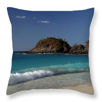 Rough Trunk  Bay Throw Pillow