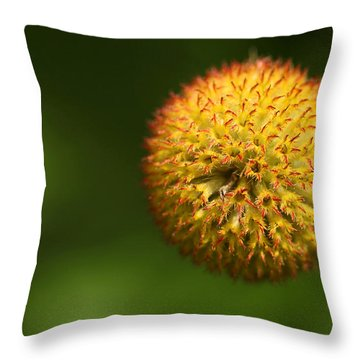 Round Flower Throw Pillow by Karol Livote