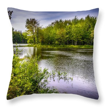 Round The Bend 35 Throw Pillow by Mark Myhaver