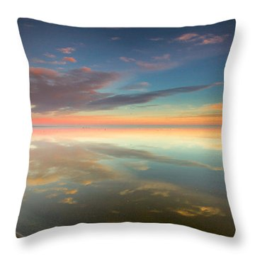 Rounded Reflections Throw Pillow