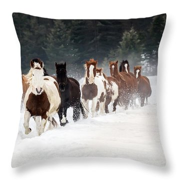 Roundup Throw Pillow by Jack Bell