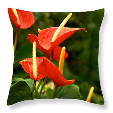Rousing Reds Throw Pillow