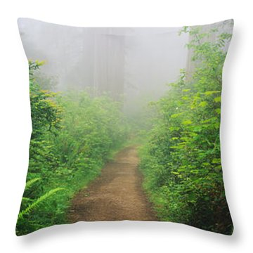 Route 1 In Northern California Throw Pillow by Joseph Sohm ChromoSohm Media Inc