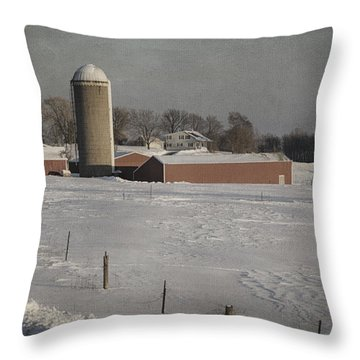 Route 45 Barn Throw Pillow by Joan Carroll