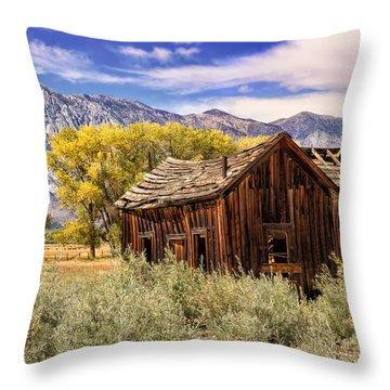Rovana Homestead Throw Pillow