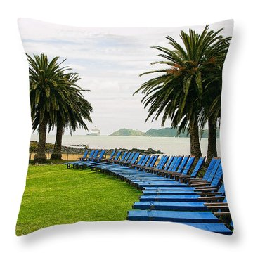 Row Of Blue Throw Pillow by Linda Phelps