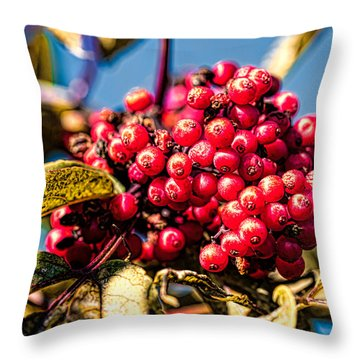 Rowan Berries Throw Pillow