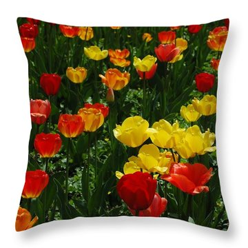 Rows Of Tulips Throw Pillow by Kathleen Struckle