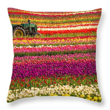 Throw Pillow featuring the photograph Rows Of Tulips by Patricia Davidson