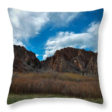 Roxborough Cragginess Throw Pillow