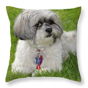 Roxey Glamour Throw Pillow by Arthur Fix