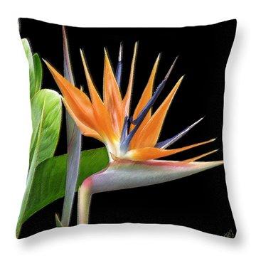 Royal Beauty I - Bird Of Paradise Throw Pillow