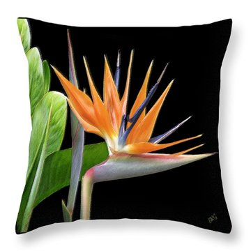 Royal Beauty I - Bird Of Paradise Throw Pillow by Ben and Raisa Gertsberg