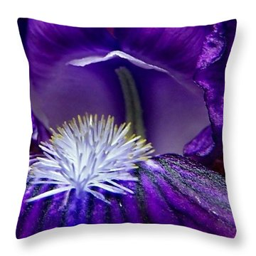 Royal Purple Iris Is Quite A Lady Throw Pillow