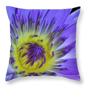 Royal Purple Water Lily #11 Throw Pillow