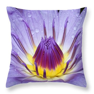 Royal Purple Water Lily #3 Throw Pillow