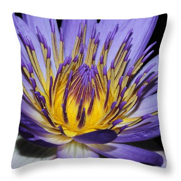 Royal Purple Water Lily #5 Throw Pillow by Judy Whitton